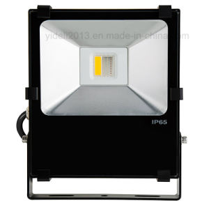 New Wi-Fi Compatible RGBW LED Floodlight Fixture 50 Watt 30W pictures & photos