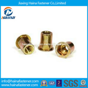 Flat Head Inner-Hex Body Rivet Nut M3-M12 Made in China pictures & photos