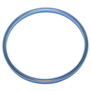Filled Glass Fiber PTFE V Spring Energized Seals pictures & photos