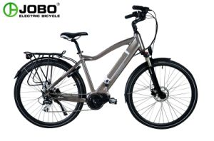 250W Pedelec Power Bike Lithium Battery Electric Bicycle (JB-TDA15L) pictures & photos