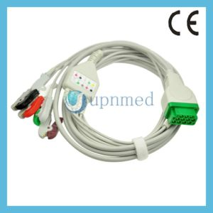 2021141-001 Tge-Marquette ECG Cable with Leadwires pictures & photos