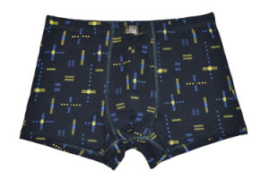 95%Cotton/5%Pendex Men Underwear Boxers Brief Fashion for 204 pictures & photos