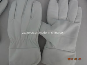 Winter Glove-White Cow Leather Glove-Utility Glove-Work Glove pictures & photos