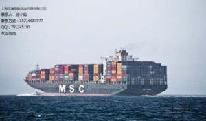 Professional Logistics Forwarder Sea Ocean Cargo Shipping Rates to Umm Qars Ali From China/Beijing/Tianjin/Qingdao/Shanghai/Ningbo/Xiamen/Shenzhen/Guangzhou