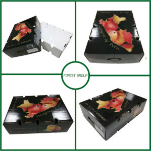 2016 New Design Jewelry Gift Box Free Shipping (FP60002362620) pictures & photos