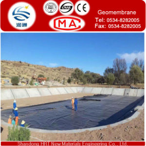 Membrane for Waterproofing Sheet pictures & photos