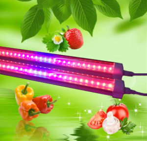 18W T8 LED Grow Light Tube Light 1200mm for Plant Growing pictures & photos