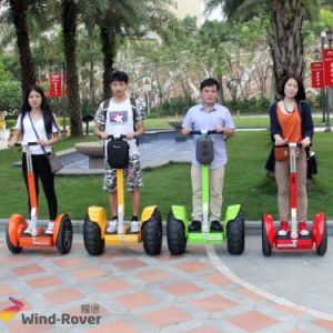 Personal Transporter Vehicle 2 Wheel Adult Electric Scooter pictures & photos