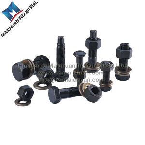 Torshear Type High Strength Bolt for Steel Structure pictures & photos