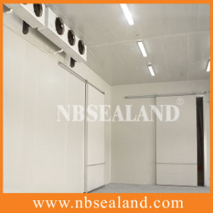 Cold Storage Room for Meat pictures & photos
