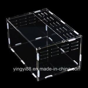 High Quality Acrylic Terrarium Reptile Box with SGS Certificates pictures & photos