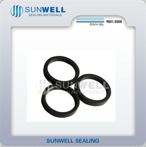 Back up Rings Reciprocating Shaft Seals pictures & photos