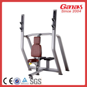 Vertical Bench Ganas Body Building Fitness Equipment