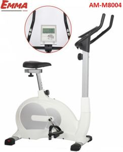 Hot Sale Item Magnetic Bike (S8004W) pictures & photos