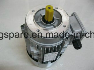 Electric Motor for Yc90s-2, Yc90L-4, Y100L1-4, Y112m-2 pictures & photos