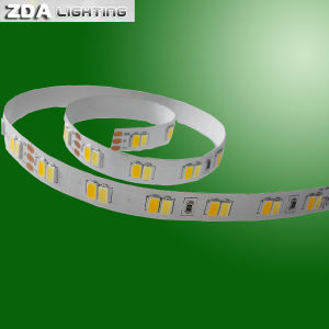 Color Temperature Adjustable LED Strip pictures & photos
