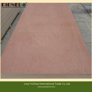 Hot Sales Commercial Plywood for Middle East and North Africa pictures & photos