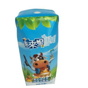 200ml Prisma Aseptic Brick Carton for Milk pictures & photos