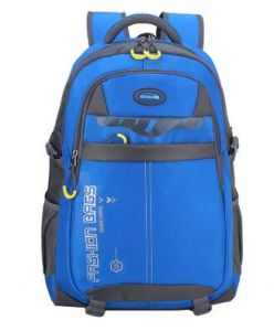 Top Quality OEM School Backpacks, Laptop Bags pictures & photos