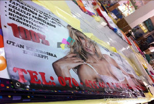 High Quality Printing Parapet Advertising PVC Banner For Propaganda pictures & photos