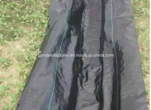 PP Geo Fabric / Landscape Fabric / Weed Mat Use in Your Farm Anti Grass pictures & photos