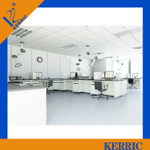 Inorganic and Organic Chemistry Lab Furniture for Rd Laboratory
