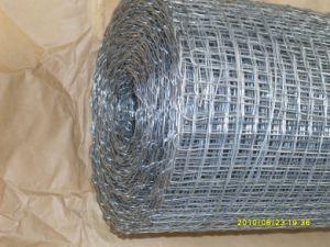 ISO 9001 Galvanized Square Mesh pictures & photos