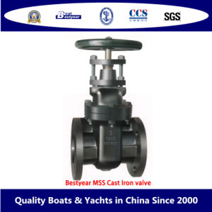 Bestyear Mss Cast Iron Valve pictures & photos
