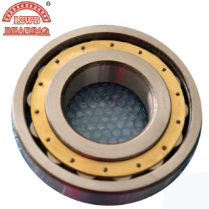 Professional Manufacturing Cylinder Roller Bearing (N320M) pictures & photos