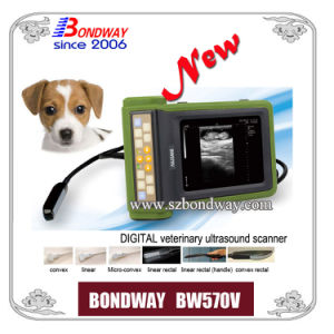 Vet Ultrasound Scanner Factory Price pictures & photos