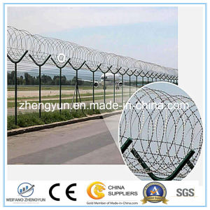 Airport Security Fence / Galvanized Iron Wire Mesh pictures & photos
