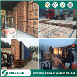 18mm Outdoor Film Faced Plywood/ Exterior Construction Formwork Shuttering Plywood pictures & photos