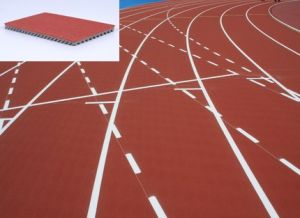 Iaaf Certified Huadongtrack, Prefabricated Rubber Running Flooring