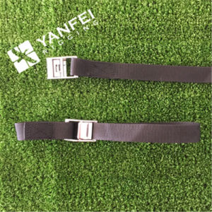 25mm/500kg Cambuckle Strap pictures & photos