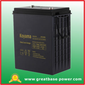 Durable Deep Cycle Floor Machine/Sweeper/Scrubber Battery / Accumulators 6V 310ah pictures & photos