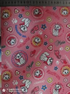 Cartoon Printed 600d*300d Fabric with PVC Coating! pictures & photos