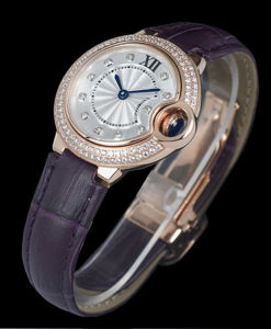 Quality Mechanical Fashion Watch (Ctier01)