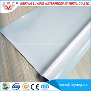 2.0mm PVC Waterproof Membrane for Flat Roof pictures & photos