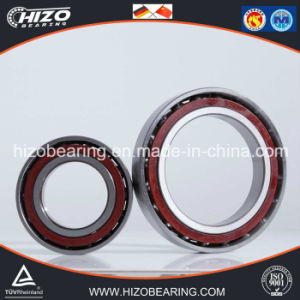 Turntable Roller Bearing Angualr Contact Ball Bearing (71934C, 71936C)