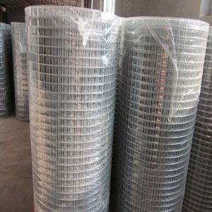 Low Carbon Galvanized Welded Wire Mesh Roll pictures & photos