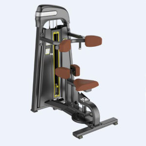 2015 Newest Gym Equipment Rotary Rorso (SD1047) pictures & photos