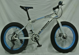 26*4.0′′ Steel MTB Bicycle/Bike with 7 Speed pictures & photos