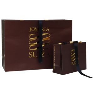 Clothing Shopping Paper Bag (LPPS-005)