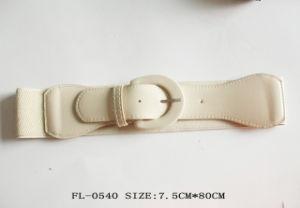 Fashion Elastic Belt Fl-0540