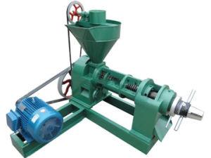 Hot Sale Edible Mini Oil Press Machine 6yl-95 pictures & photos