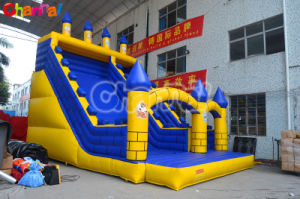 Inflatable Giant Slide Dry Slide (Chsl360) pictures & photos