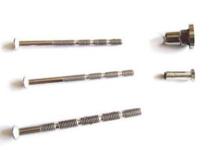 Good Quality Modified Thruss Head Bamboo Screws pictures & photos