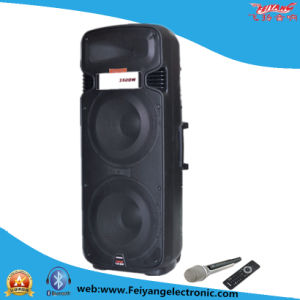 Double 15′′ Big Power Professional Speaker with Wireless Mic F65 pictures & photos