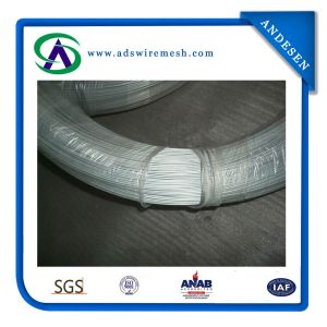 Electric Galvanized Iron Wire (ADS-GW-06) pictures & photos