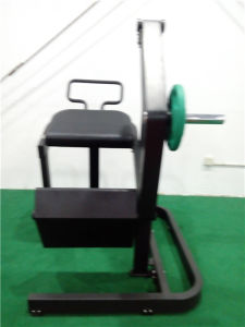 Free Weight Gym Equipment Names Rear Kick (FW08) pictures & photos